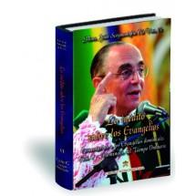Lo inédito sobre los Evangelios - Volumen VI